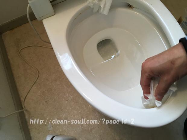 尿石ゴシゴシ